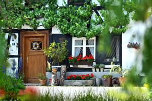 Ideen zur vorgartengestaltung mit kies und split - Schattige ecken im garten gestalten ...