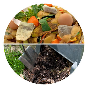 Kompost-Collage