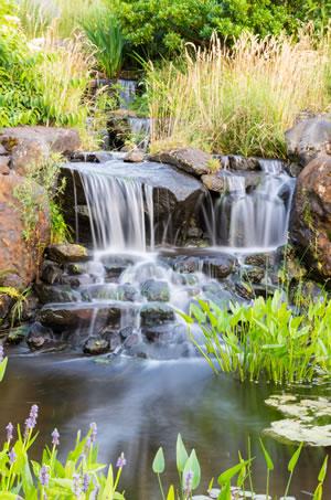 Bachlauf anlegen pflanzen und gestaltung mit und ohne teich - Wasserfall gartenteich ...