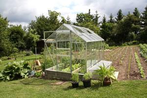 gew chshaus bepflanzen pflanzplan pflanzen tipps. Black Bedroom Furniture Sets. Home Design Ideas