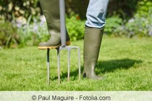 Rasen lueften