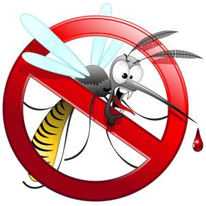 Mücken Terrasse Vertreiben : m cken vertreiben hausmittel gegen stechm cken ~ Lizthompson.info Haus und Dekorationen