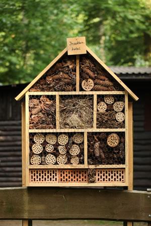 insektenhotel f r n tzlinge selber bauen. Black Bedroom Furniture Sets. Home Design Ideas