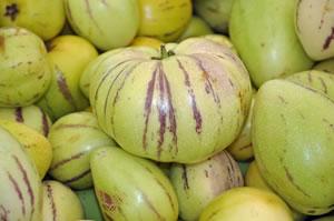 Melonenbirnen-Frucht