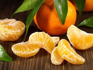 Frucht des Mandarinenbaums
